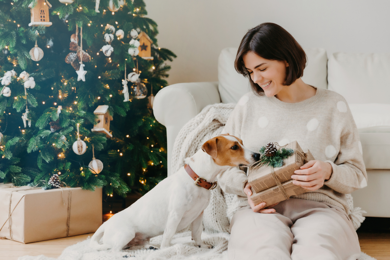 Our Favorite Gifts for Dog Lovers under $30